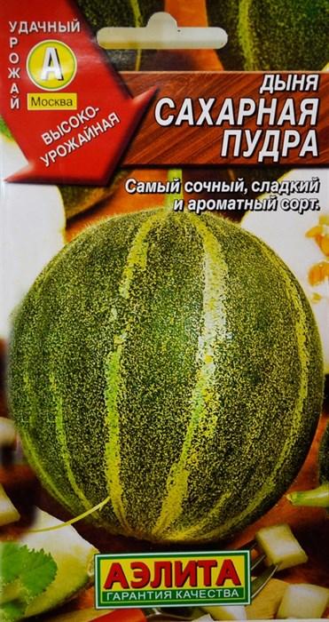 Дыня Сахарная пудра - фото 27953