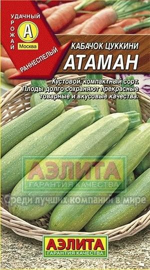 Кабачок Цуккини Атаман - фото 28123