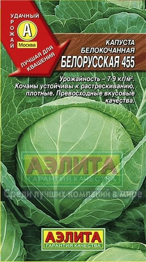 Капуста б/к Белорусская 455 - фото 28180
