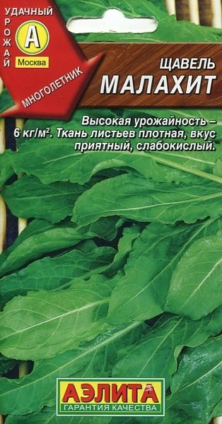 Щавель Малахит