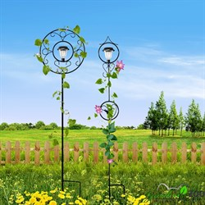 шпалера для цветов