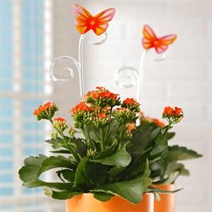Держатель для растений  бабочка 39 см