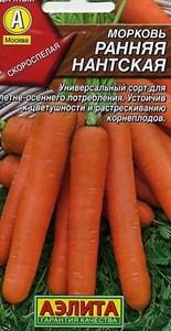 Морковь Ранняя Нантская