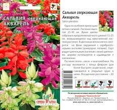 Сальвия Акварель 0,1гр