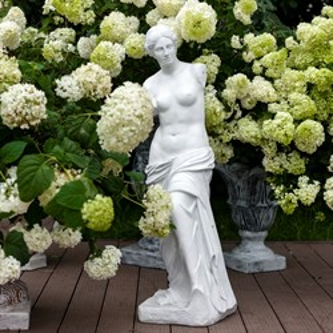 Фигура Венера (аренда)