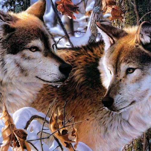 Садовые фигуры волка