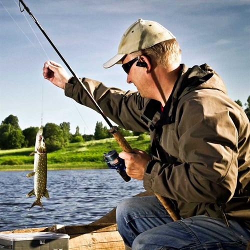 Прикормка для ловли рыб