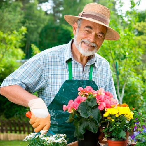 Выезд садовника