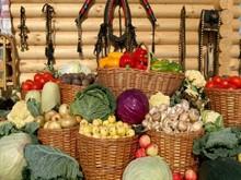 Как дачники хранят урожай в 21 веке?