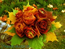 Флористические композиции из осенних листьев