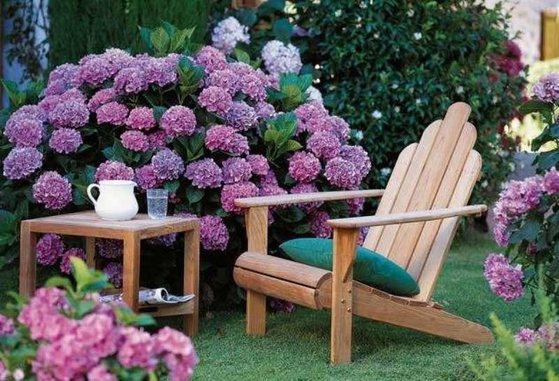 Лучшие способы затенения садового участка