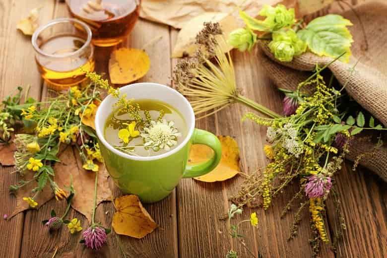 Травяной чай прямо с дачной грядки