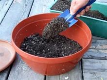 Как приготовить почвосмесь для рассады своими руками?