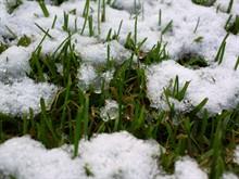Весеннее внесение удобрений по снегу