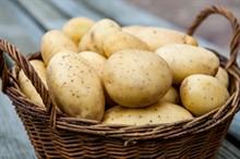5 лайфхаков при посадке картофеля