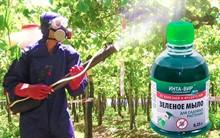 Зелёное мыло для садовых растений