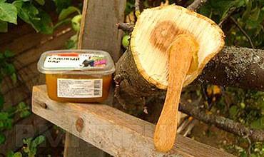 Садовый вар для заживления ран на деревьях
