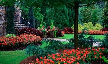Стильный монохромный сад
