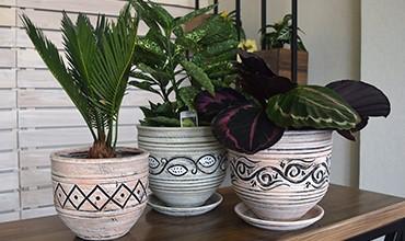 Обновлённая коллекция керамических горшков