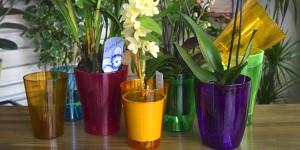 Горшки для орхидей