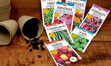 Стоит ли заказывать семена из-за границы?