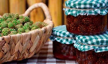 Рецепт варенья из шишек на зиму