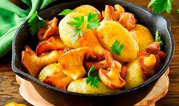 Простые рецепты с грибами-лисичками