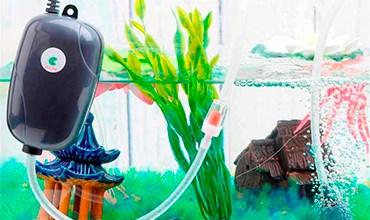 Что нужно знать при выборе компрессора для аквариума?
