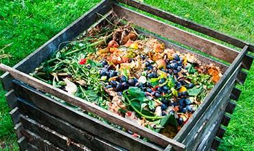Как сделать качественный компост для подкормки растений?
