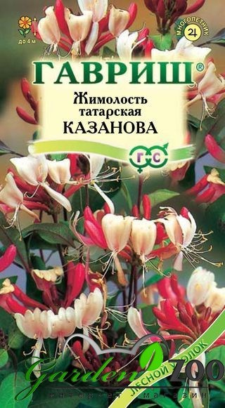 Жимолость татарская Казанова 0,08г - фото 13927