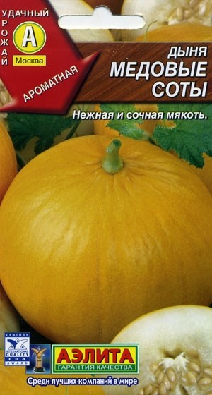 Дыня Медовые соты - фото 27950