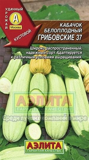 Кабачок Грибовский 37 белоплодный - фото 28115