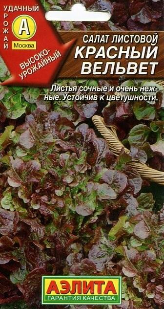Салат Красный вельвет листовой