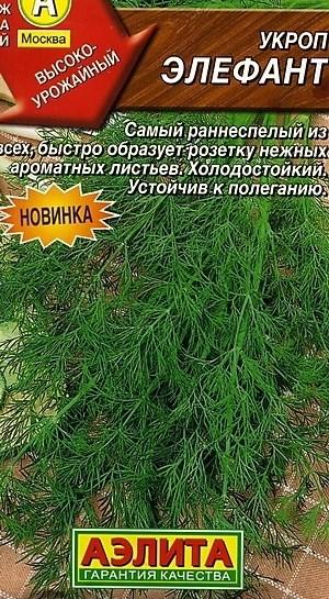 Укроп Элефант