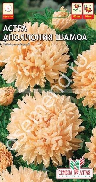Астра Аполлония шамоа 0,2гр - фото 51127