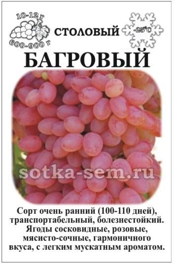 Виноград Багровый - фото 52585