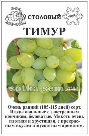 Виноград Тимур - фото 52595