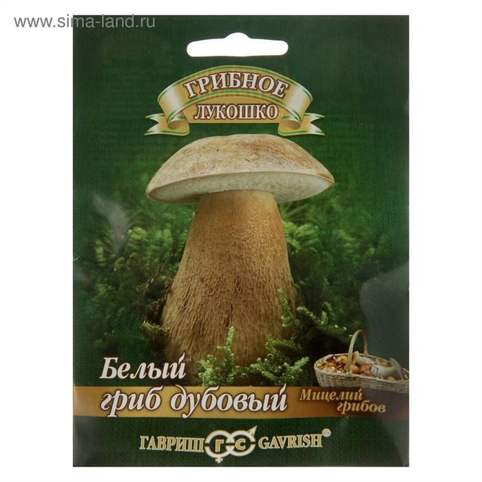 Белый гриб Дубовый на субстрате 15мл - фото 56066