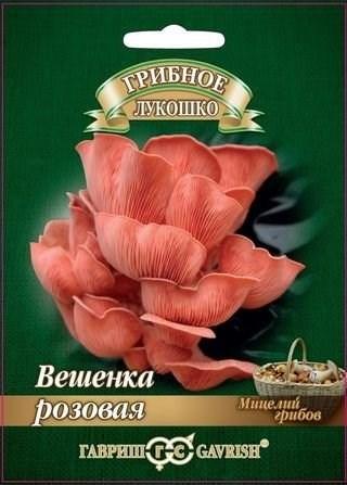 Вешенка Розовая на древесной палочке 12шт - фото 56073