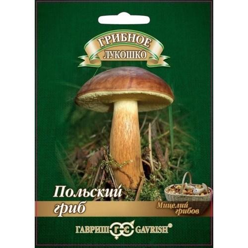 Польский гриб на зерновом субстрате 15мл - фото 56082
