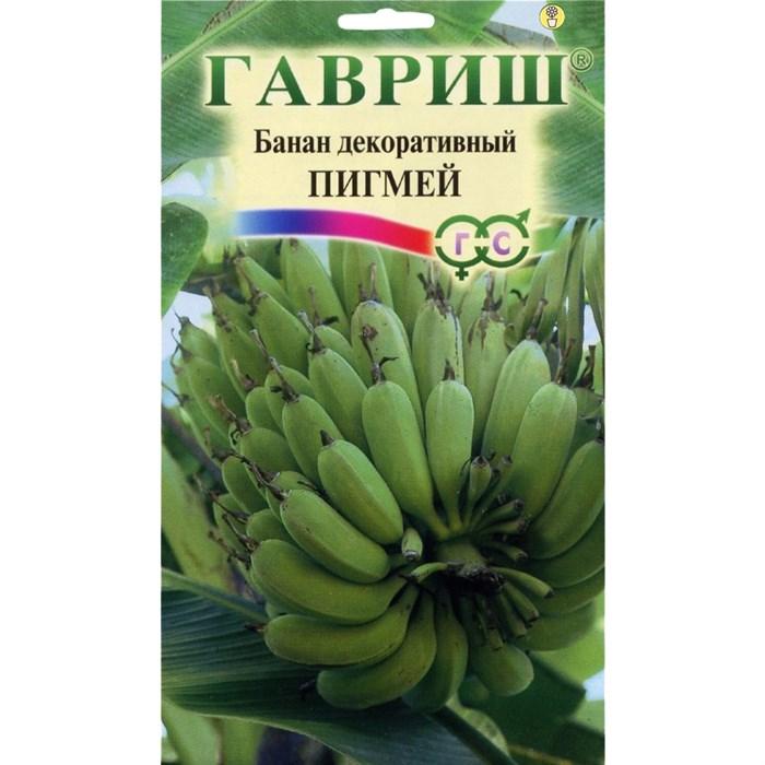 Банан декоративный Пигмей 3 шт - фото 63250