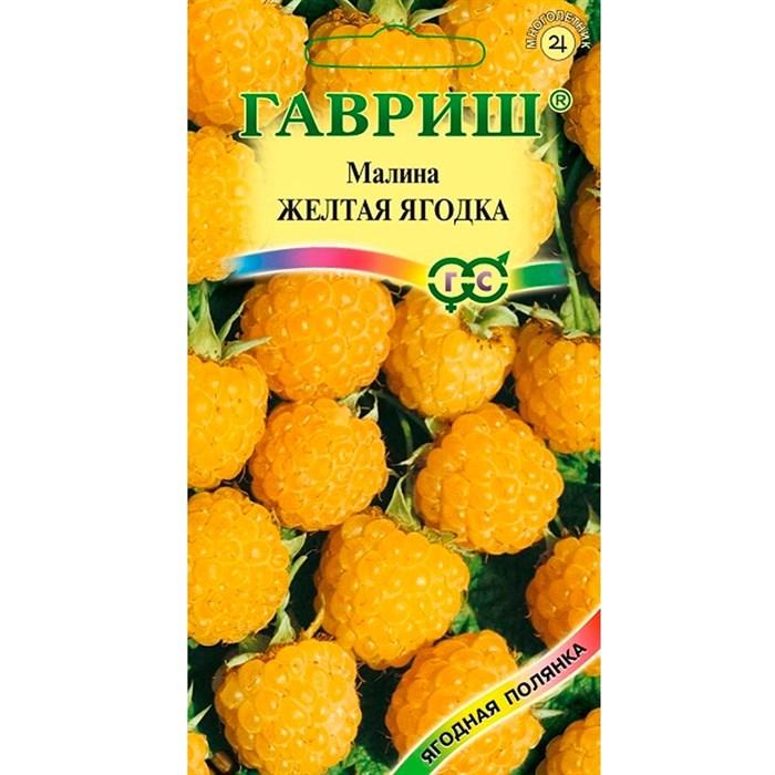 Малина Желтая ягодка 10шт - фото 64273