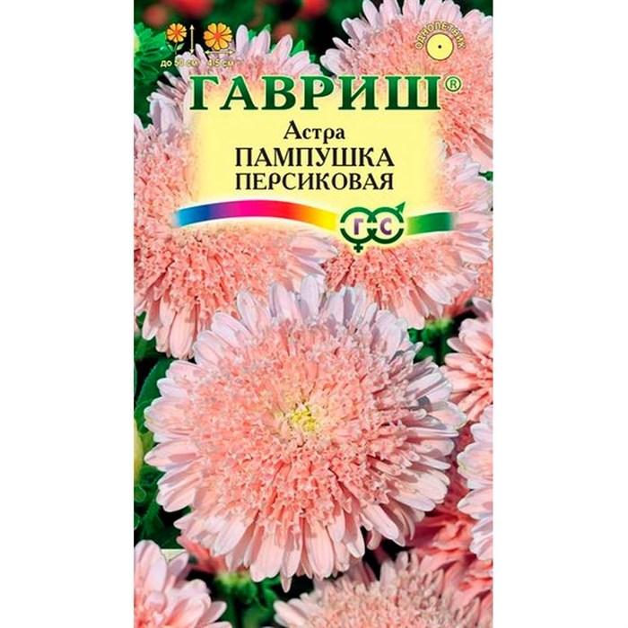 Астра Пампушка персиковая 0,3гр - фото 65017