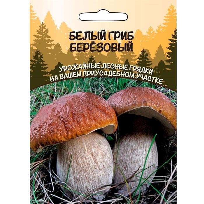 Белый гриб Березовый - фото 65462
