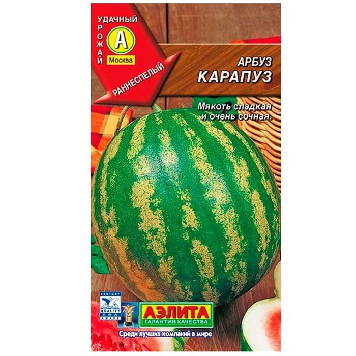Арбуз Карапуз - фото 65936