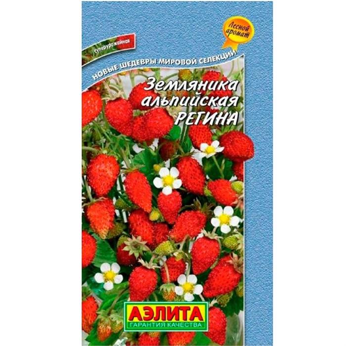 Земляника Регина - фото 65964