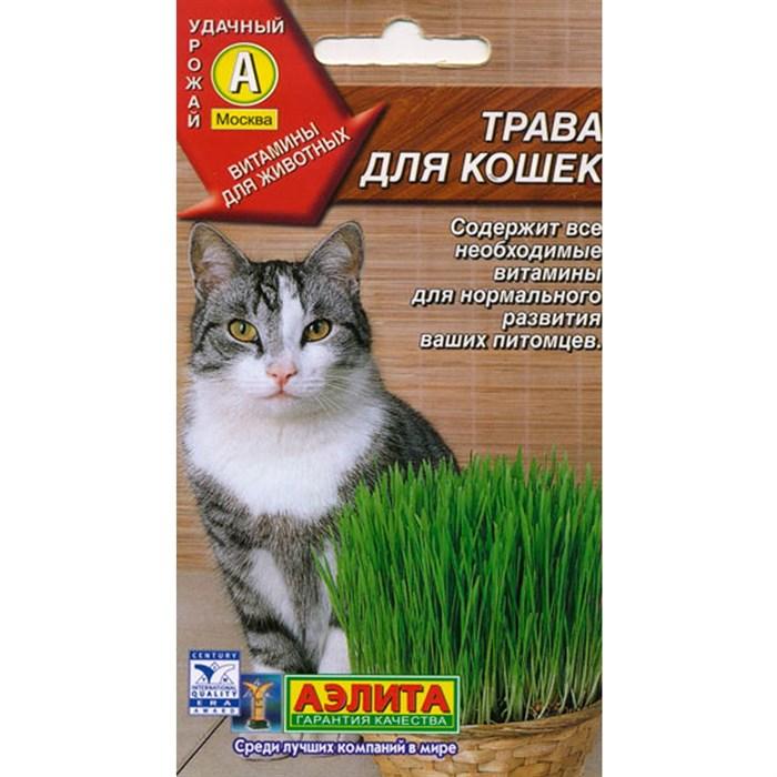 Трава для кошек - фото 66034