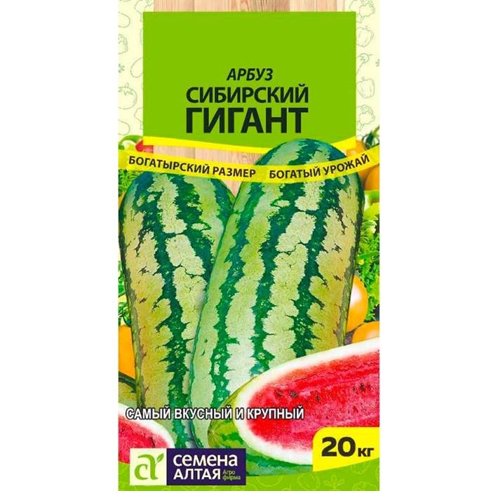 Арбуз Сибирский гигант 1гр - фото 66606