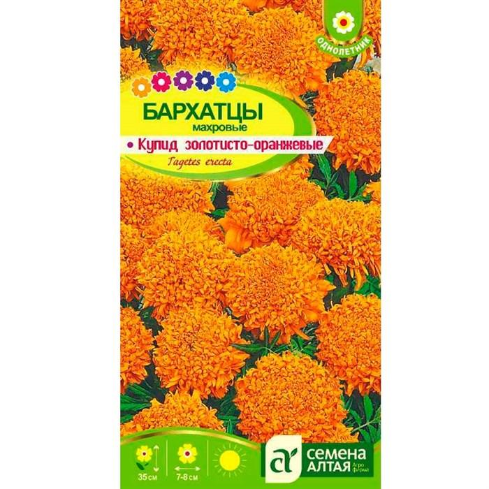 Бархатцы Купид золотисто-оранжевые 0,3гр - фото 66657