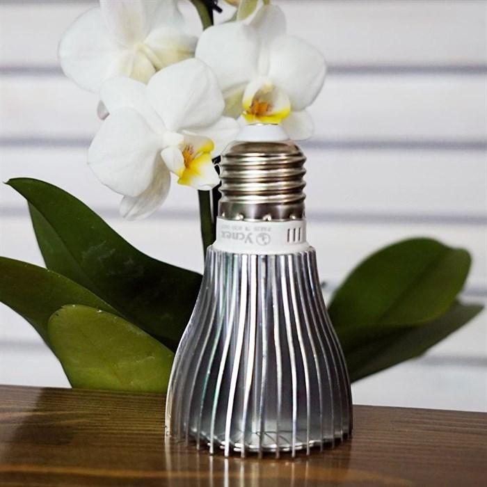 Лампа для растений Гелиос 21 - фото 71828